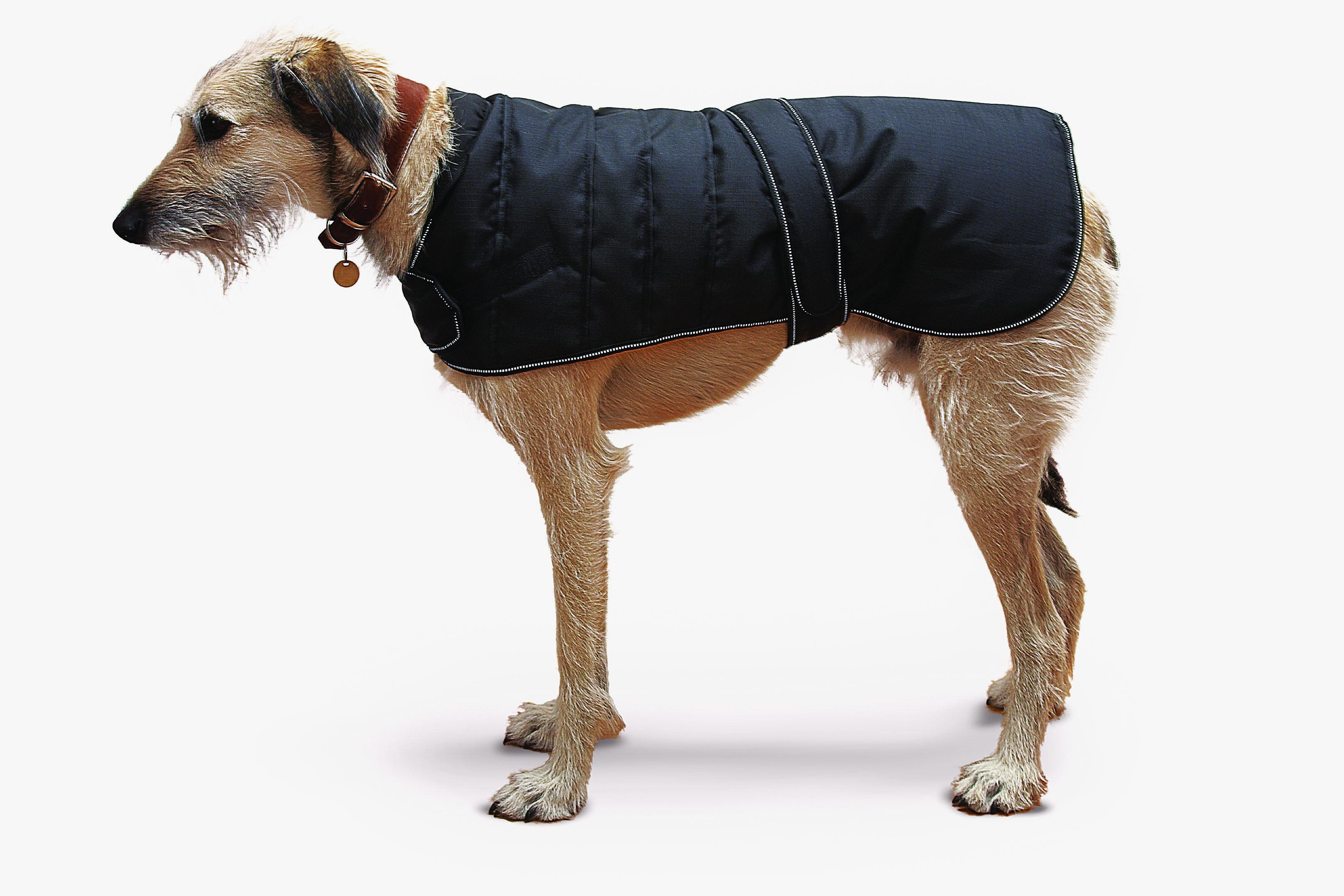 Danish Dog Design Harness kutyakabát